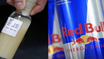 Woman Becomes Pregnant By Drinking Red Bull