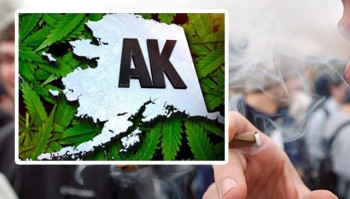 Alaska Becomes 3rd State to Legalize Marijuana