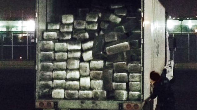 Marijuana In A Record-Breaking Drug Bust