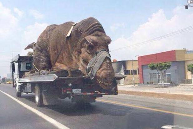 Tyrannosaurus Rex on truck