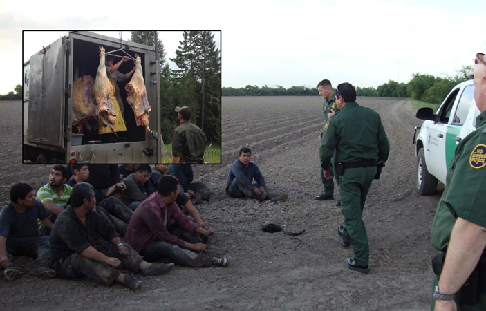 illegal immigration pictures - photo #36