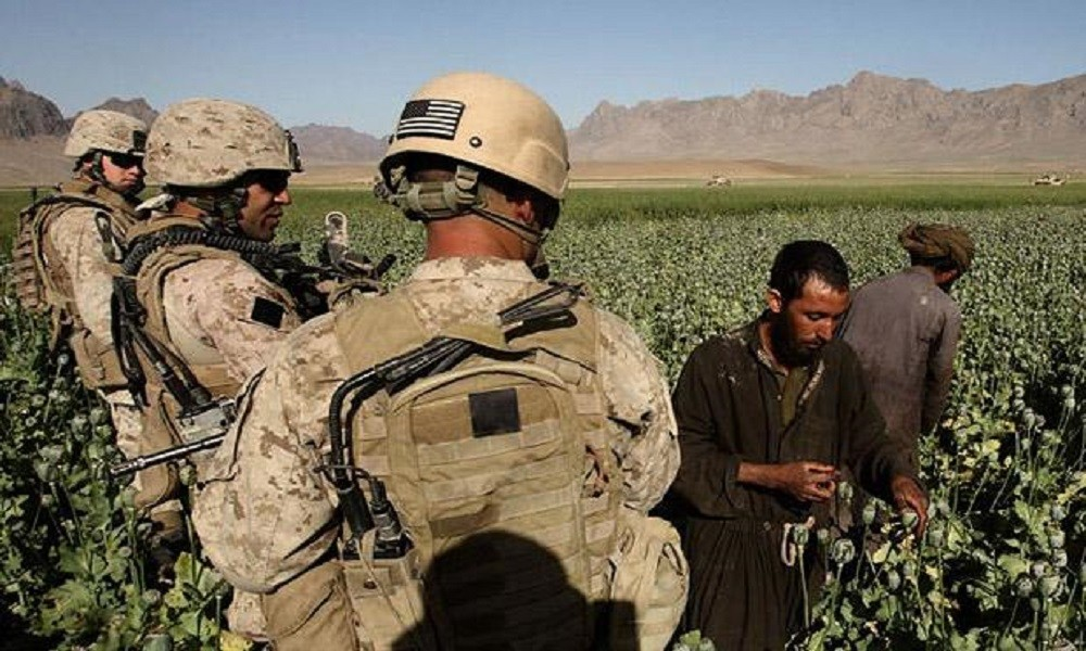 drugs in afghanistan