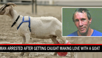 man caught with animal in act