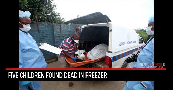 dead in freezer