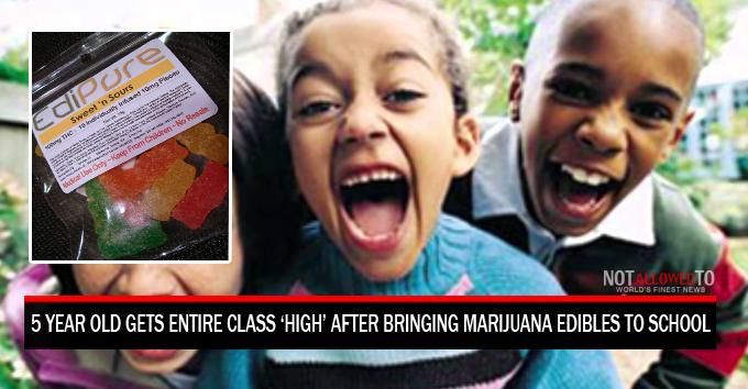 marijuana in school